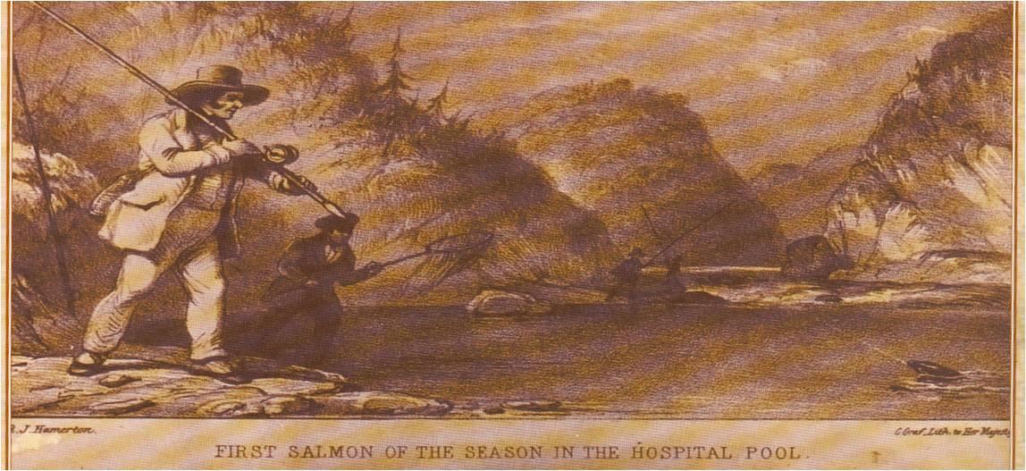 Source: Histoire de saumon dans la Jacques-Cartier
