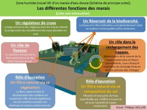 Source: http://www.nouara-algerie.com/article-les-marais-en-algerie-focus-zones-humides-en-algerie-4-116642205.html