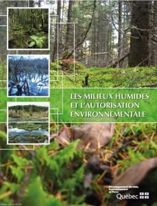 MH et autorisation environnementale